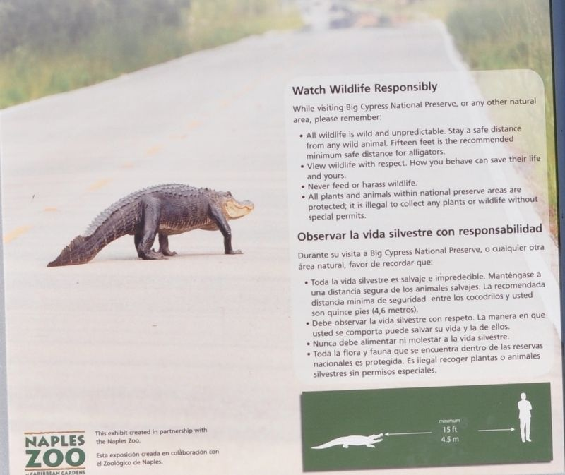 Watch Wildlife Responsibly image. Click for full size.