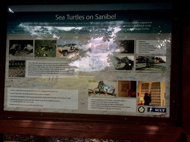 Sea Turtles on Sanibel Marker image. Click for full size.