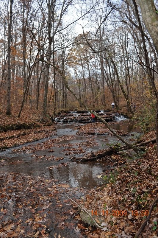 Shoals Creek Preserve Tract image. Click for full size.