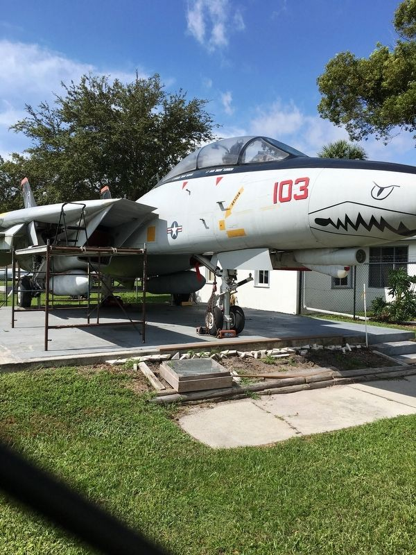 F-14 Tom Cat Fighter image. Click for full size.