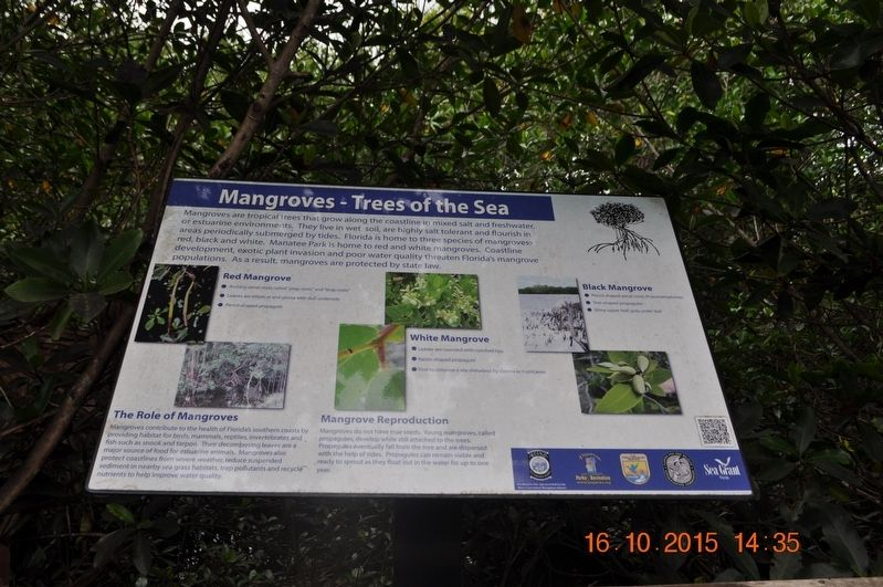 Mangroves - Trees of the Sea Marker image. Click for full size.