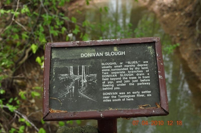 Donivan Slough image. Click for full size.