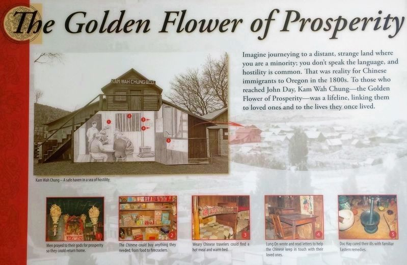 The Golden Flower of Posperity image. Click for full size.