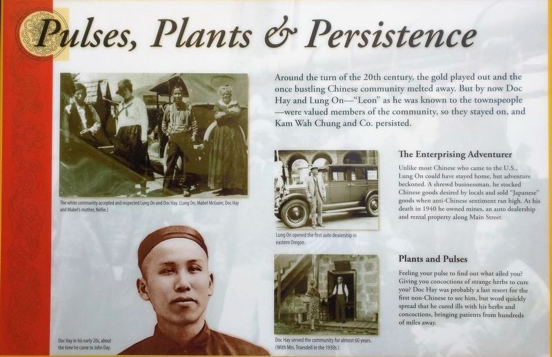 Pulses, Plants & Persistence image. Click for full size.