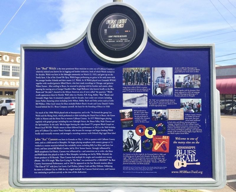 Calhoun County Blues Marker (Rear) image, Touch for more information