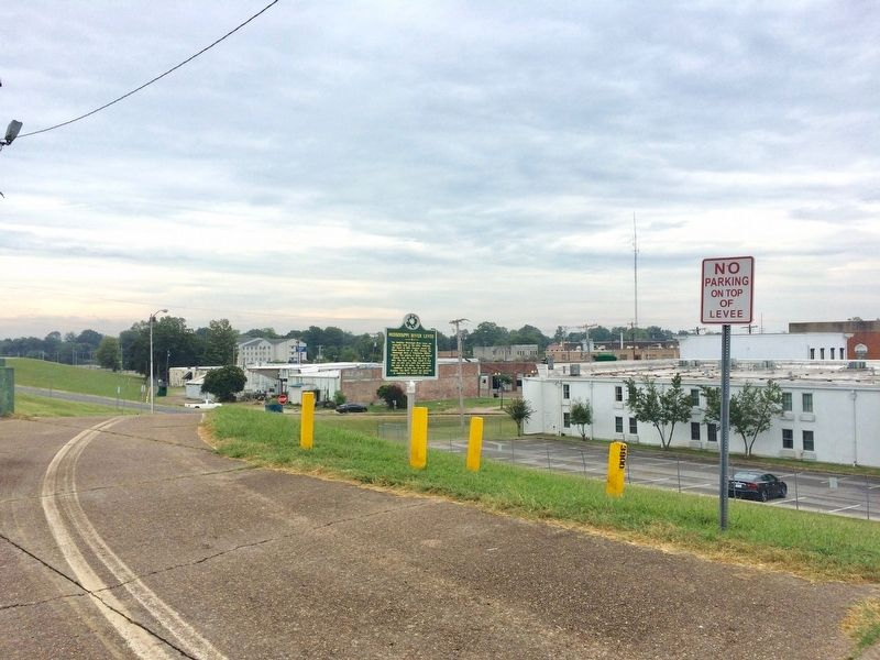 View from the levee into Greenville. image. Click for full size.