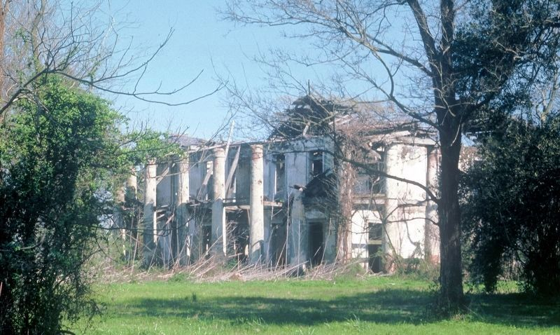Seven Oaks Plantation Ruins image. Click for full size.