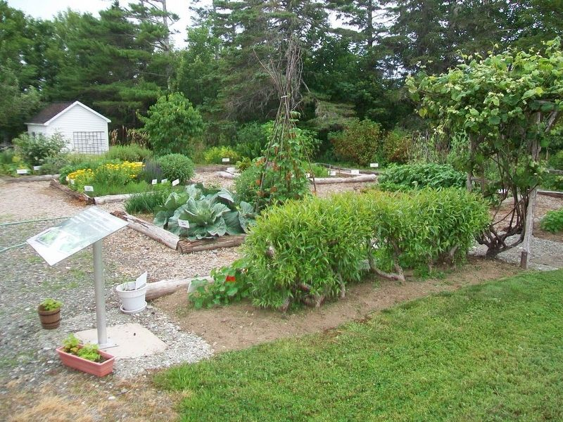 Potager Acadien / Acadian Garden and Marker image. Click for full size.