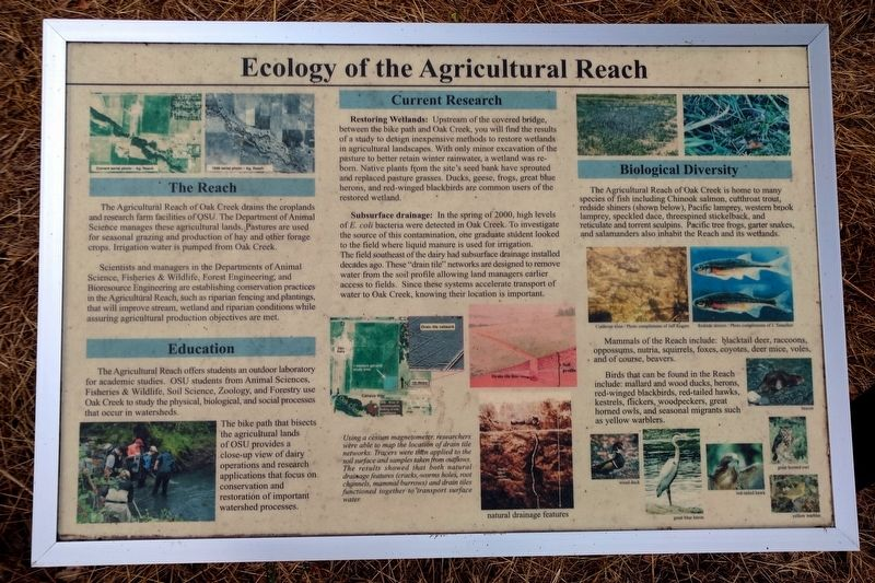 Ecology of the Agricultural Reach Marker image. Click for full size.