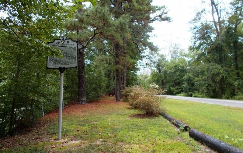 Herring (Heron) Ditch Marker, looking north. image. Click for full size.