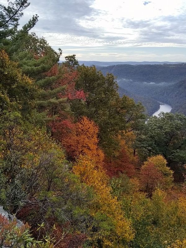 View from Coopers Rock image. Click for full size.