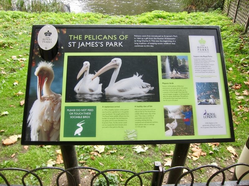 The Pelicans of St Jame's Park Marker image. Click for full size.