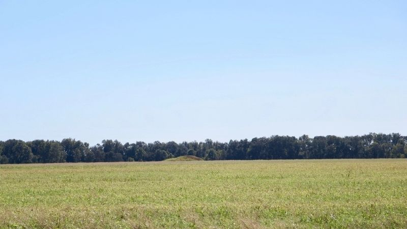 Lower Jackson Mound can be seen in far distance. image. Click for full size.