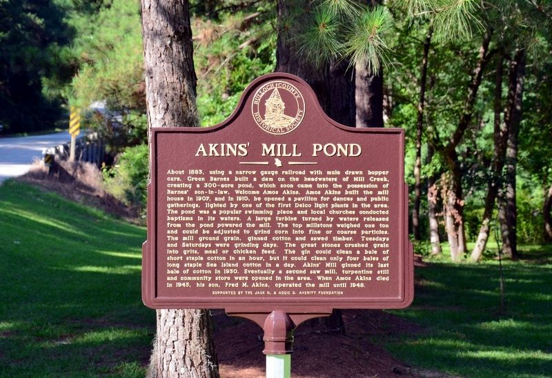 Akins' Mill Pond Marker image. Click for full size.