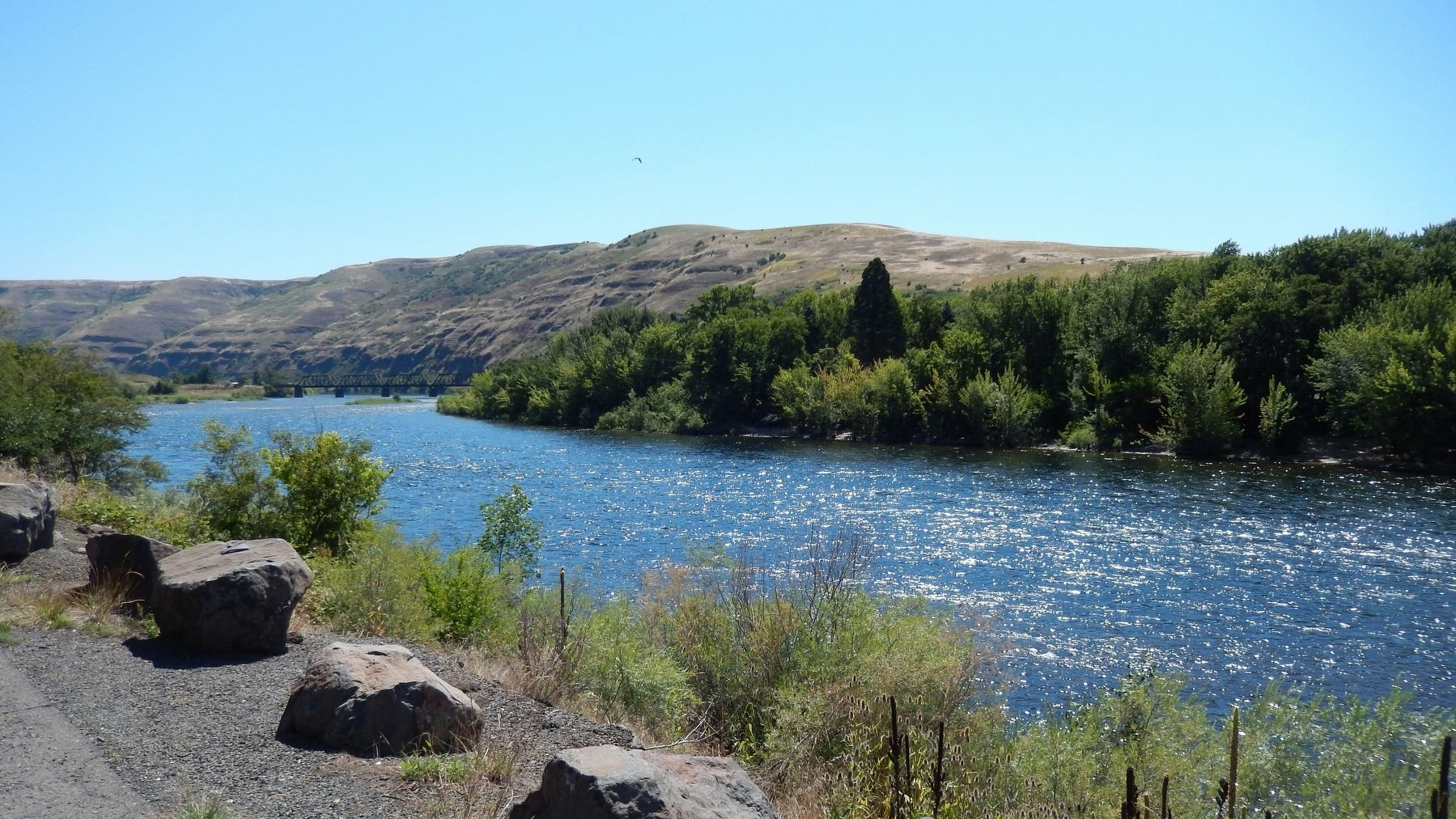 view of Clearwater River east from Spalding's Mission Marker image. Click for full size.