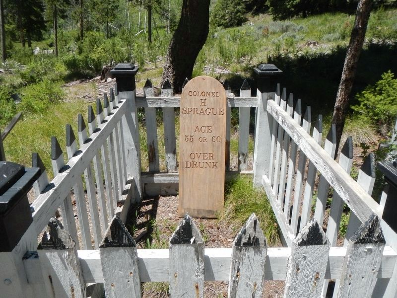 Grave of Colonel H Sprague image. Click for full size.
