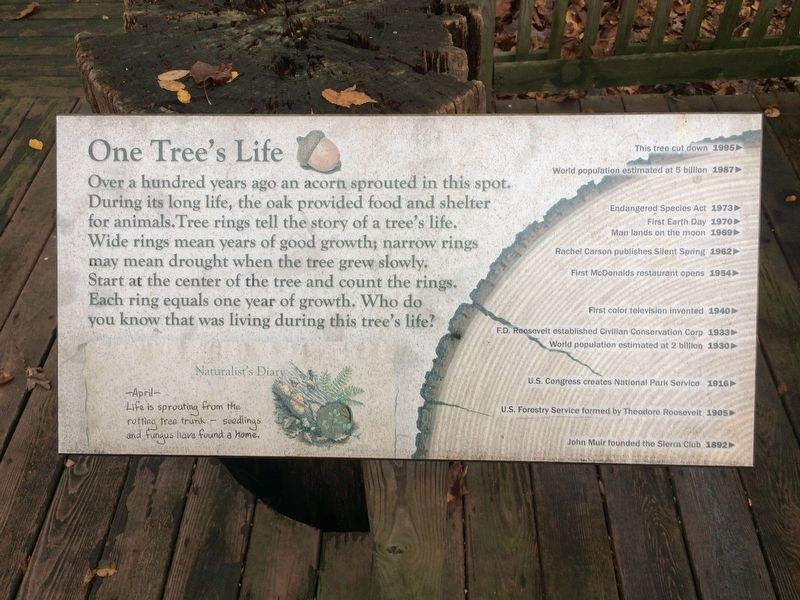 One Tree's Life Marker image. Click for full size.