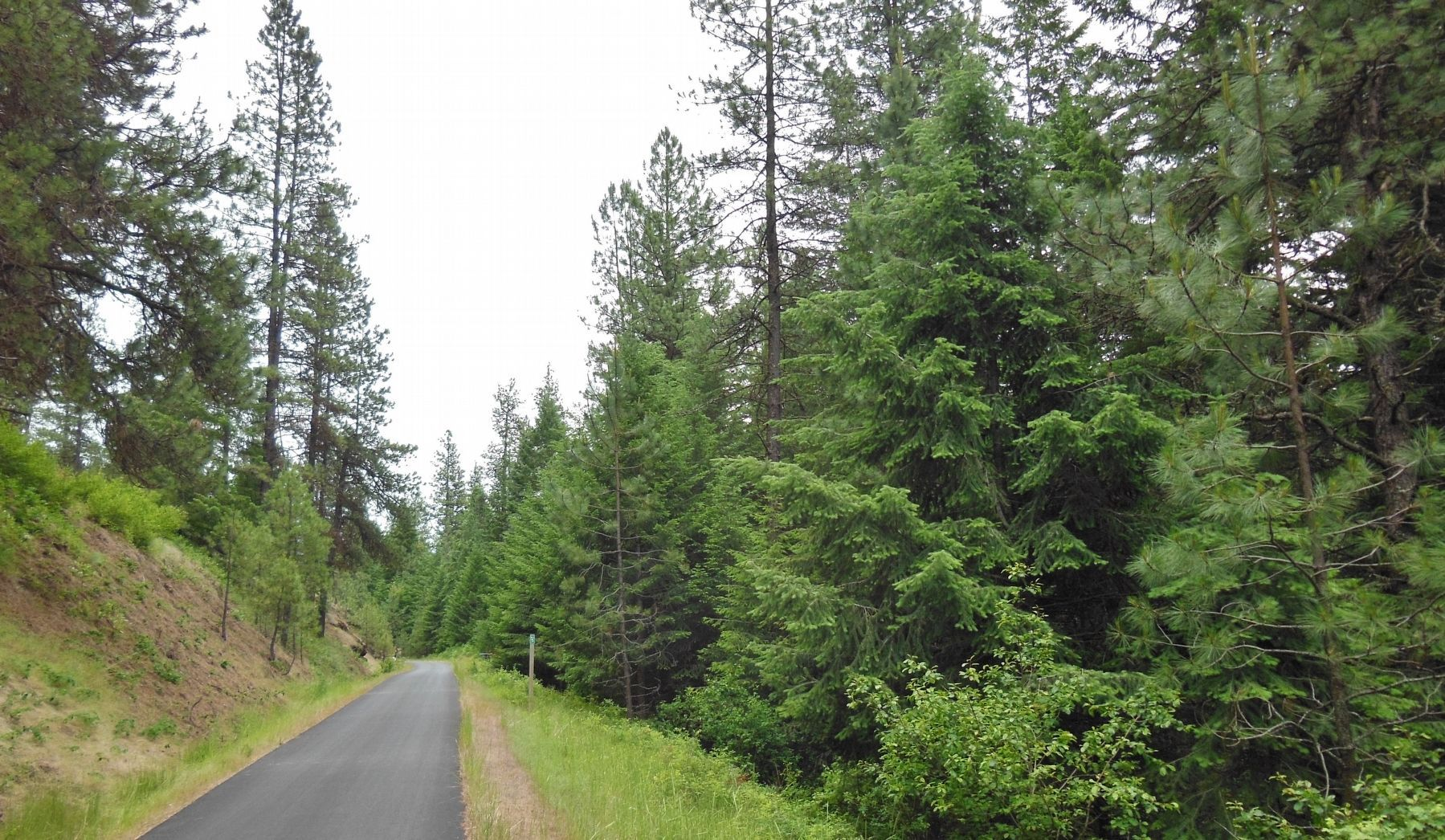 Trail of the Coeur d'Alenes (<i>view of milepost 5 from marker</i>) image. Click for full size.