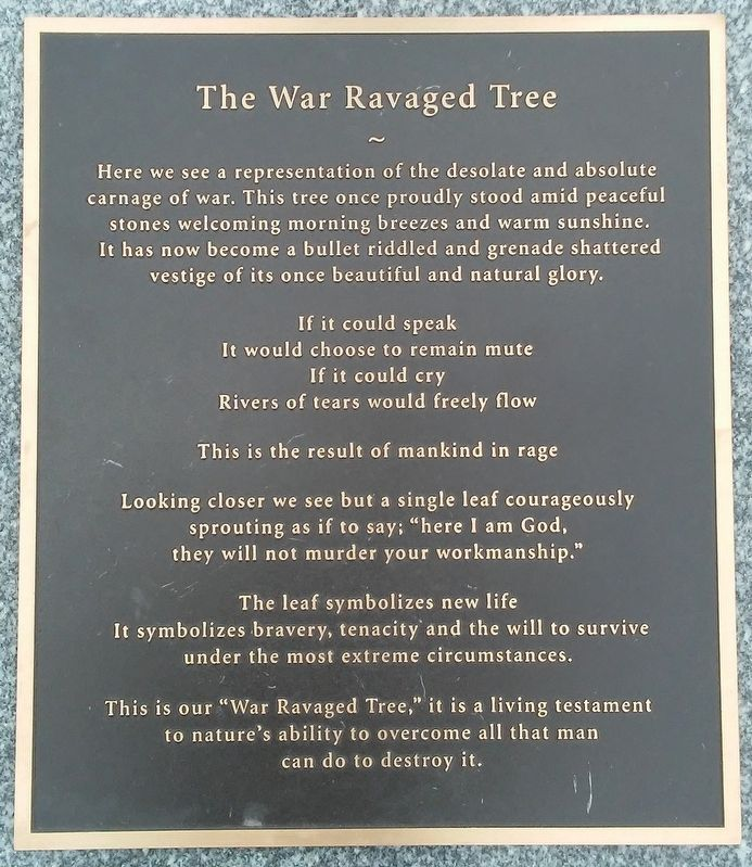The War Ravaged Tree Marker image. Click for full size.