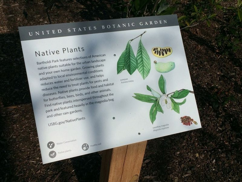 Native Plants Marker image. Click for full size.
