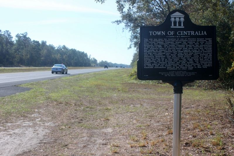 Town of Centralia Marker looking south on US 19 image. Click for full size.