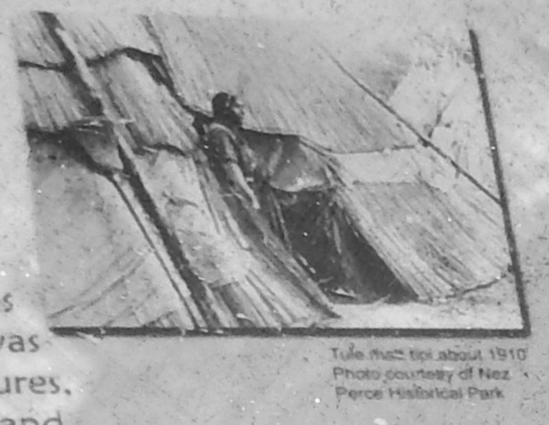 Marker detail: Tule Mat Teepee c1910 image. Click for full size.