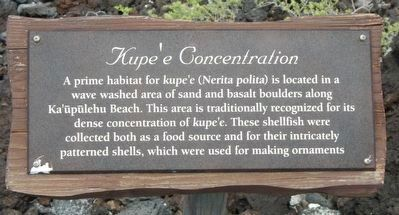 Kupe'e Concentration Marker image. Click for full size.