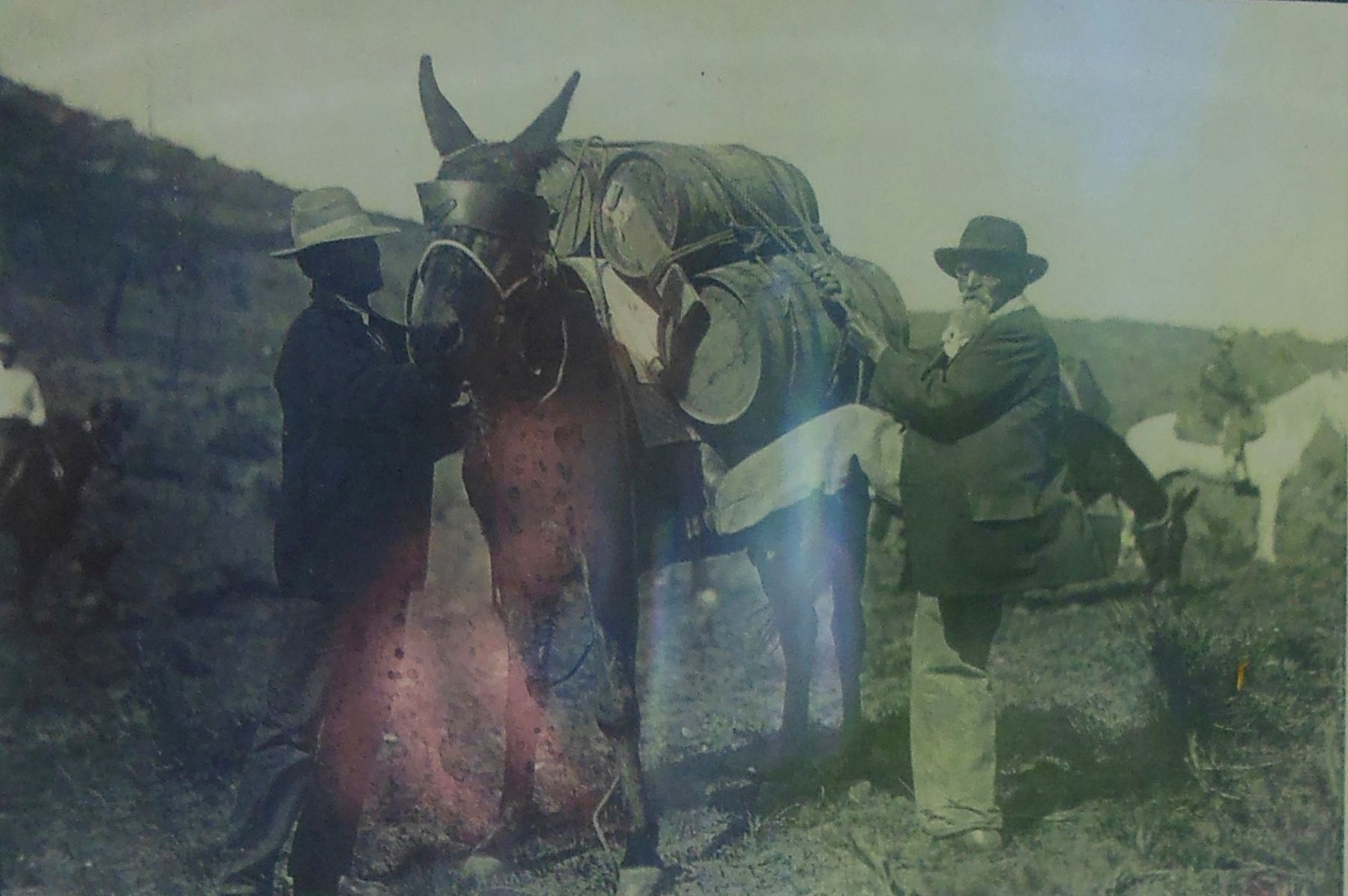 Marker detail: Jesus Urquides Packs a Mule, 1925 image. Click for full size.