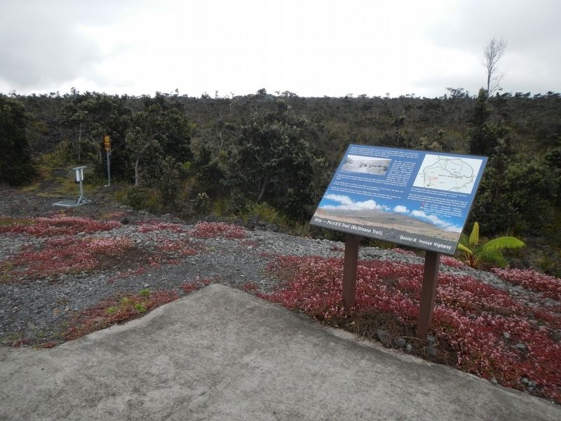 Hilo -- Pu'u'ō'ō Trail (Ka'ūmana Trail) and Marker image. Click for full size.