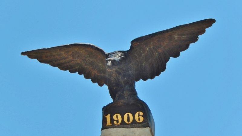 Terrell County Eagle image. Click for full size.