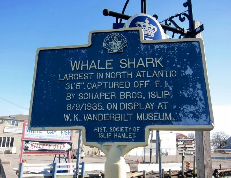 Whale Shark Marker image. Click for full size.