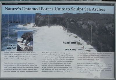 Nature's Untamed Forces Unite to Sculpt Sea Arches Marker image. Click for full size.