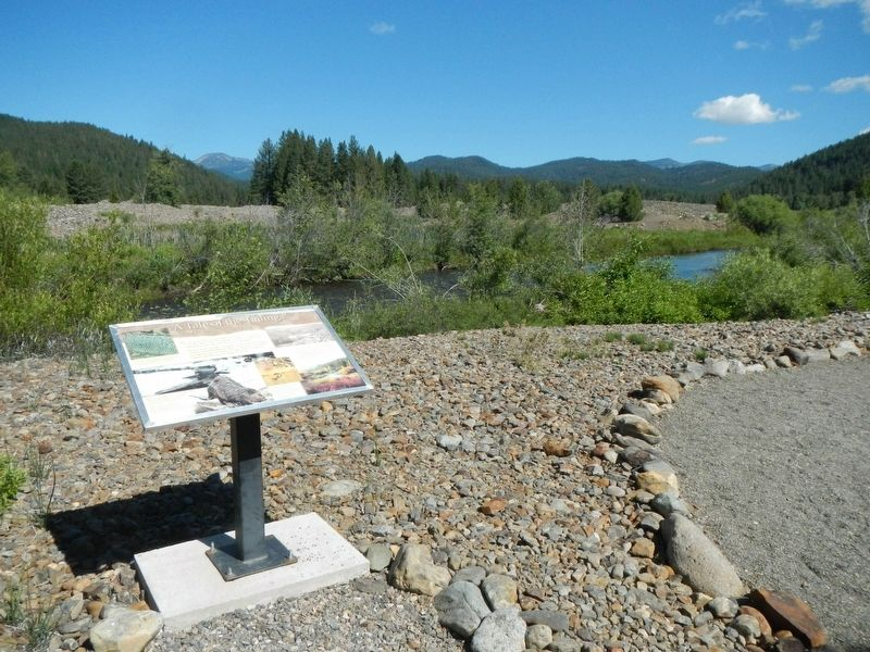A Tale of the Tailings Marker image. Click for full size.