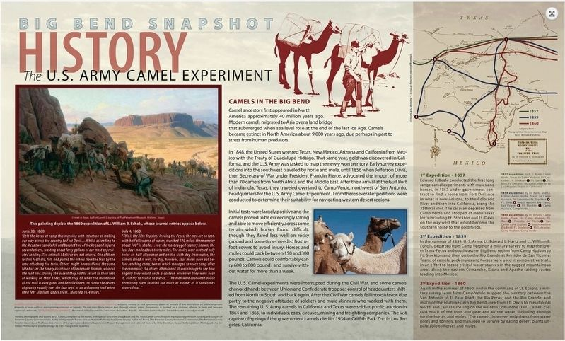 U.S. Army Camel Experiment Marker image. Click for full size.