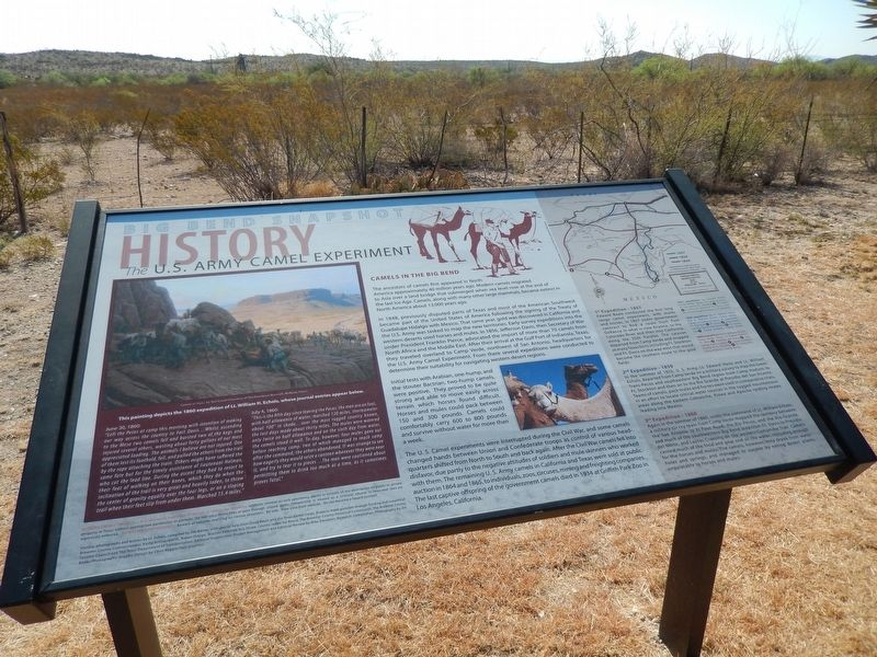 The U.S. Army Camel Experiment Marker (<i>wide view</i>) image. Click for full size.