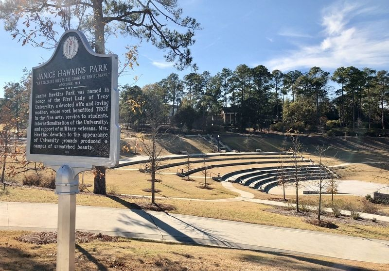 View of amphitheater at the Janice Hawkins Park. image. Click for full size.
