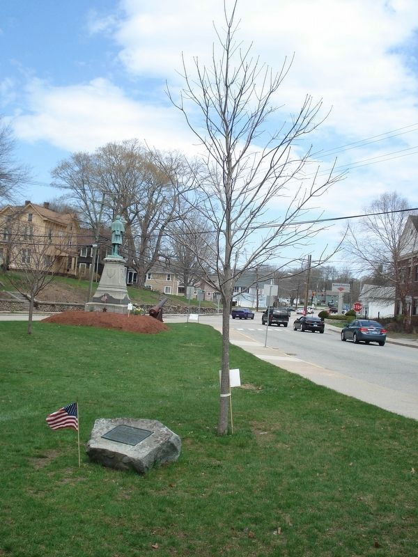 Christopher Lee Hoskins Marker and his crimson maple tree. image. Click for full size.