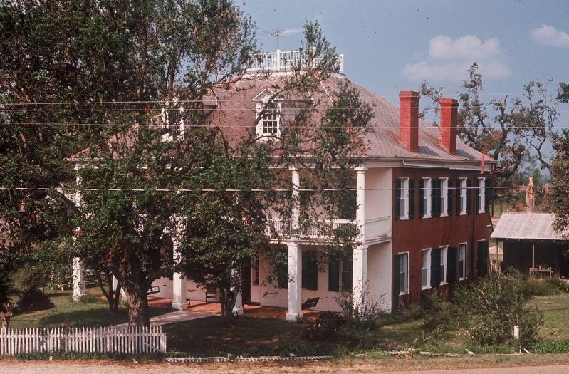 Welham Plantation in 1968 image. Click for full size.