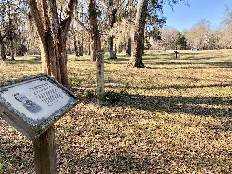 Major Hanchett marker, looking westerly towards Vine Street. image. Click for full size.