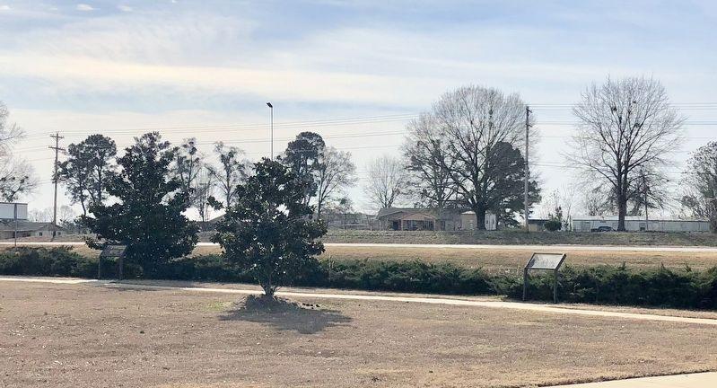 Marker can be seen on left in front of the Magnolia tree along Highway 80. image. Click for full size.