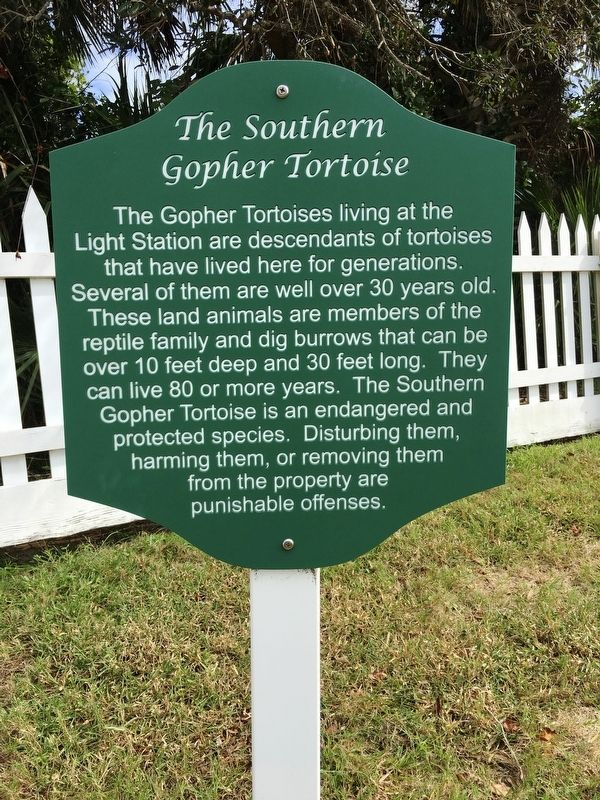 The Southern Gopher Tortoise Marker image. Click for full size.