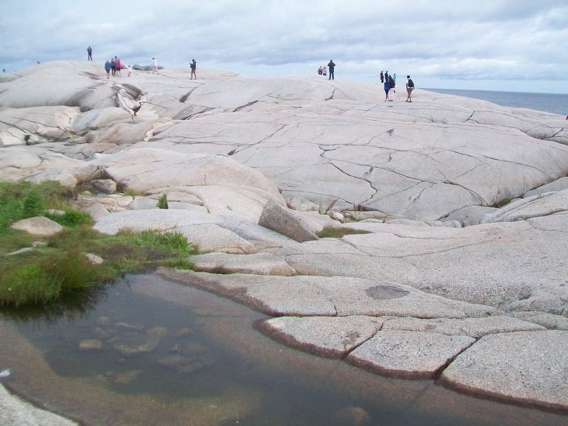 Peggy's Cove Geology image. Click for full size.