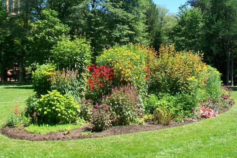 Halifax Public Gardens Herbaceous Plant Bed image. Click for full size.