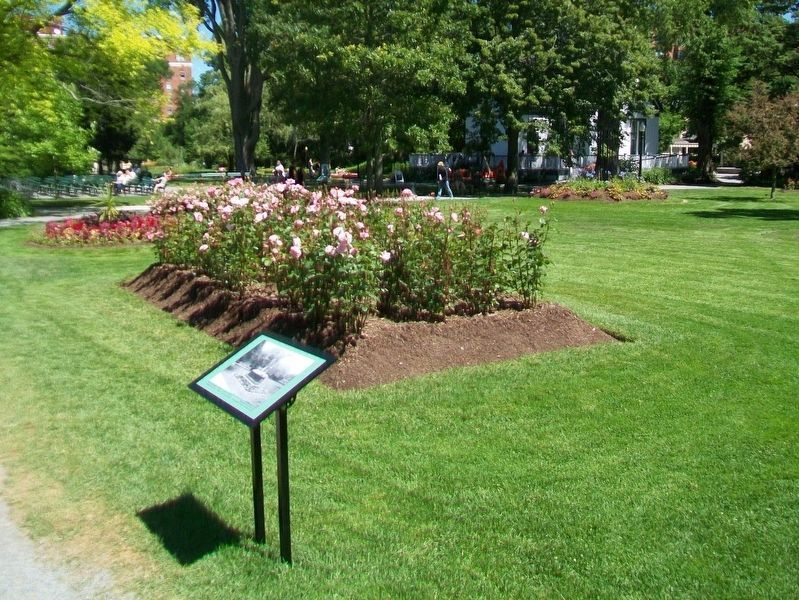"""Hamilton"" Flower-bed arrangement Marker image, Touch for more information"