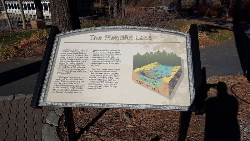 The Plentiful Lake Marker image. Click for full size.