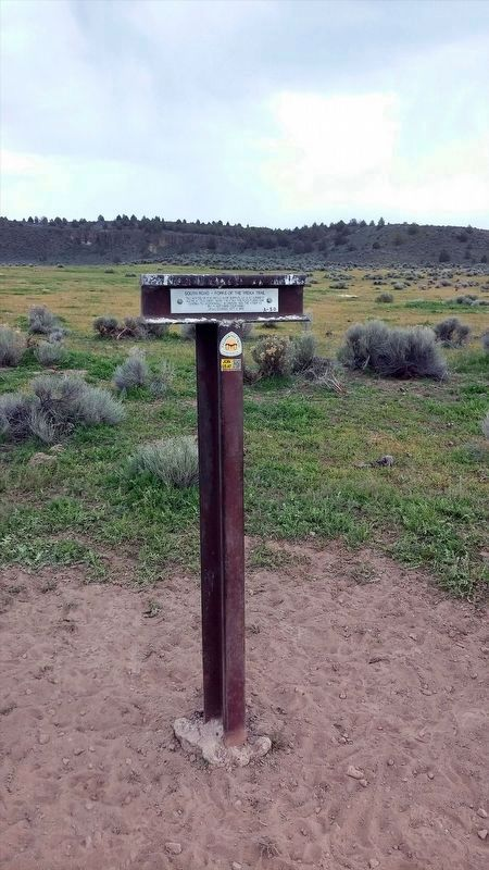 South Road - Forks Of The Yreka Trail / Yreka Trail - The Trail Forks Marker image. Click for full size.