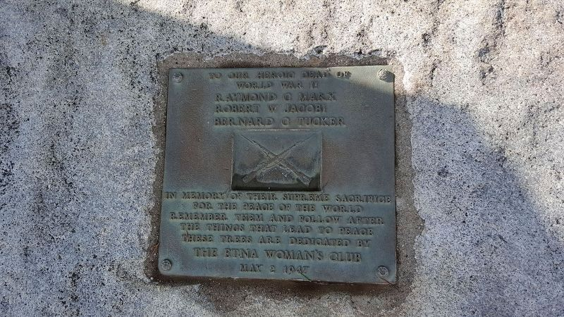 Etna Cemetery Veterans Memorial Marker - WW II Plaque image. Click for full size.