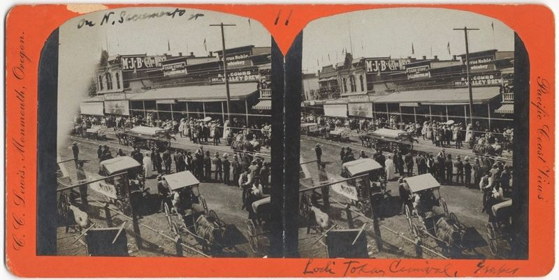 Lodi Tokay Carnival on North Sacramento Street image. Click for full size.