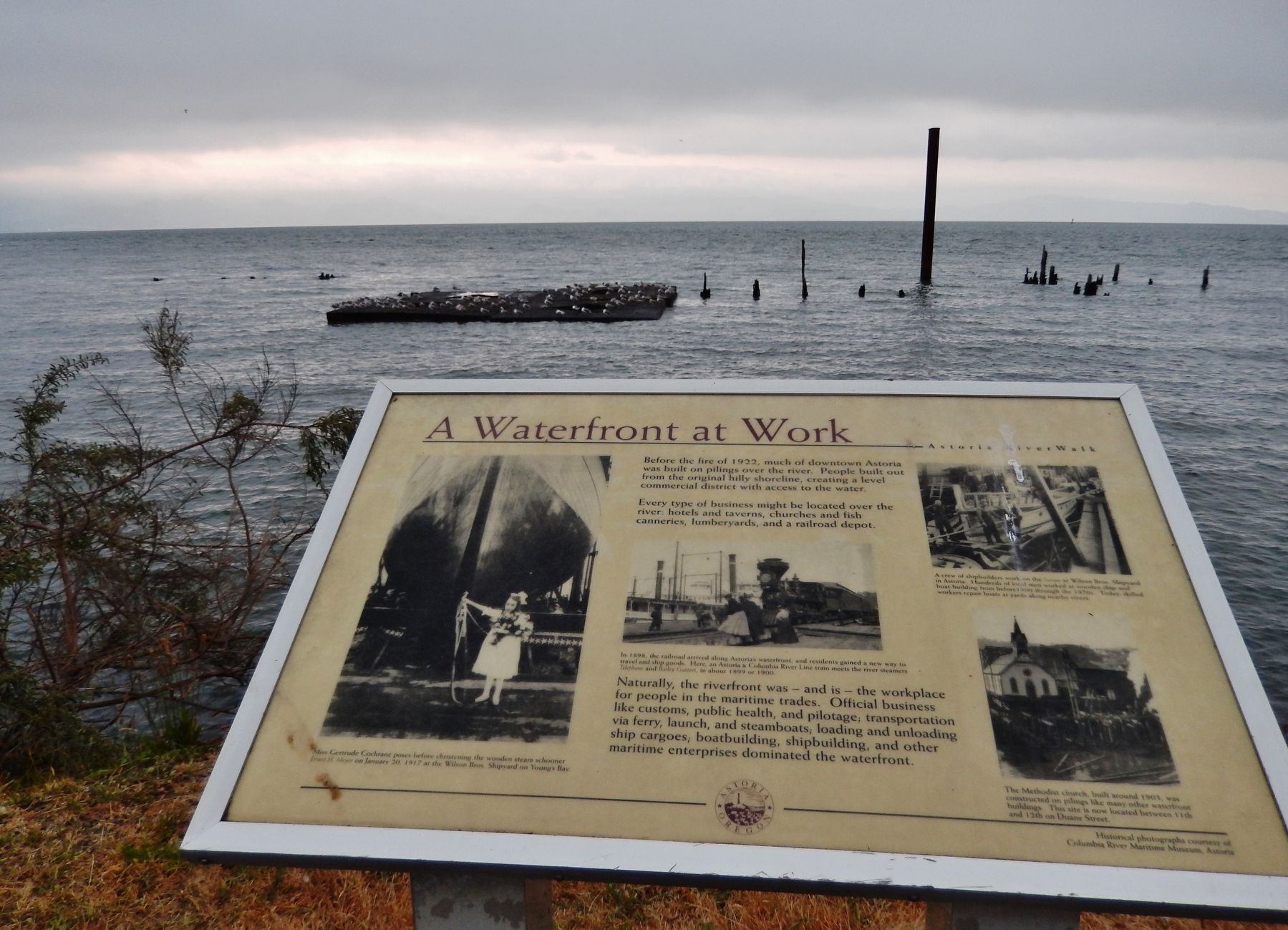 A Waterfront at Work Marker (<i>wide view looking north; Columbia River in background</i>) image. Click for full size.