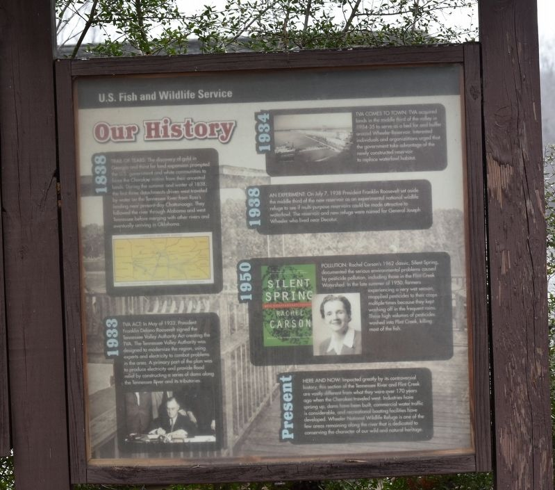 Our History Marker image. Click for full size.